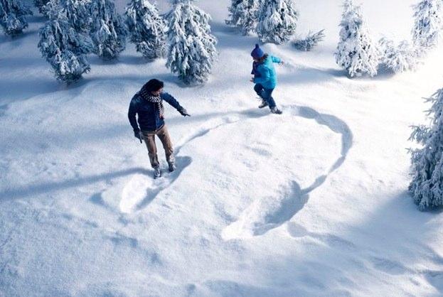 BOSE HEADSET SNOW